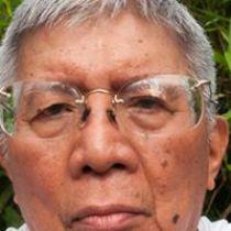 Profile pic of Vicente Francisco Villanueva Pido